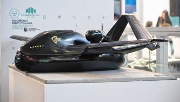 Bezpilotní létající přístroj Čirok, 750 kg vážící model - Sputnik Česká republika