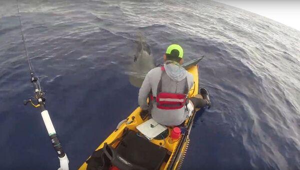 Zvědavý žralok proplul pod kajakem rybáře - Sputnik Česká republika