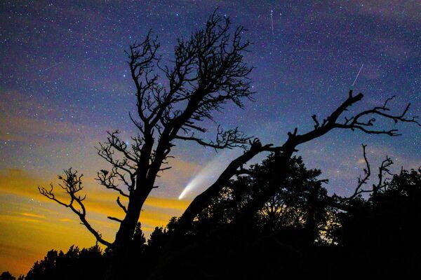 Kometa NeoWise nad Krasnodarským krajem Ruska.  - Sputnik Česká republika