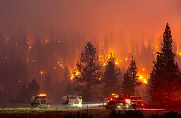 Hořící les v americké Kalifornii.  - Sputnik Česká republika