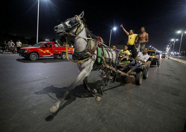 Egyptští obchodníci během dostihu v Káhiře. - Sputnik Česká republika