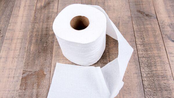 Toaletní papír - Sputnik Česká republika