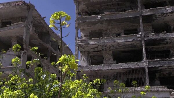 Trosky v Aleppu. Ilustrační foto - Sputnik Česká republika