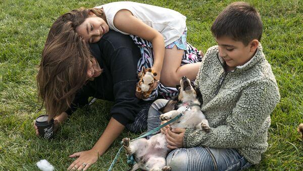 Děti si hrají se psem v centru pomoci obětem požárů - Sputnik Česká republika