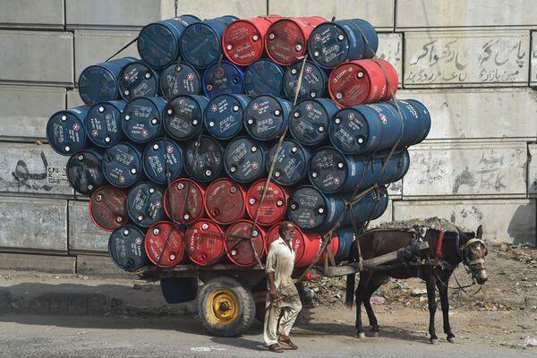 Muž doprovází osla táhnoucího povoz naložený sudy s ropou v Láhauru, Pákistán - Sputnik Česká republika