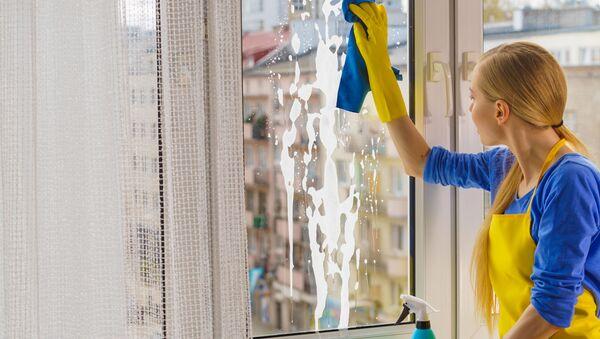 Dívka myje okno - Sputnik Česká republika