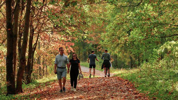 Procházka v parku. Ilustrační foto - Sputnik Česká republika