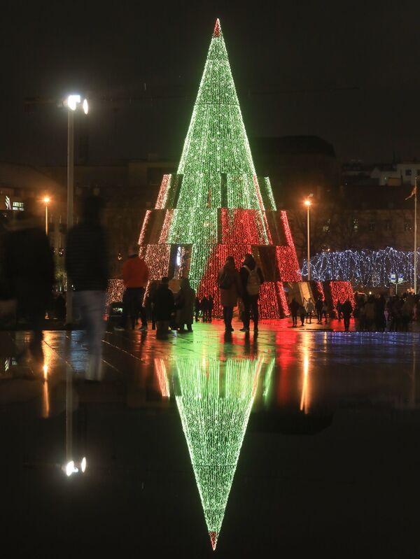 Vánoční strom ve Vilniusu - Sputnik Česká republika