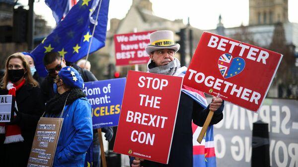 Demonstrace proti Brexitu před komorami parlamentu v Londýně - Sputnik Česká republika