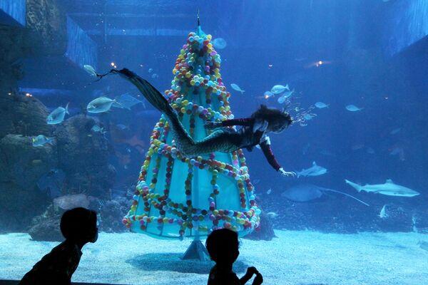 Potápěč plave kolem vánočního stromku v akváriu Jakarta - Sputnik Česká republika