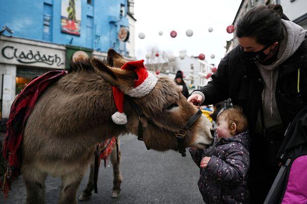 Dívka s oslem na nákupní ulici v Galway, Irsko - Sputnik Česká republika