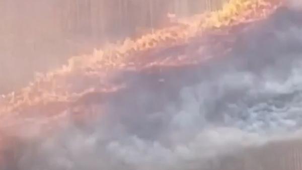 Covid-19, požáry, protesty: Události, které otřásly světem v roce 2020 - Sputnik Česká republika