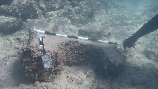 Ruiny neznámého starověkého přístavu, nalezené u pobřeží Sýrie - Sputnik Česká republika