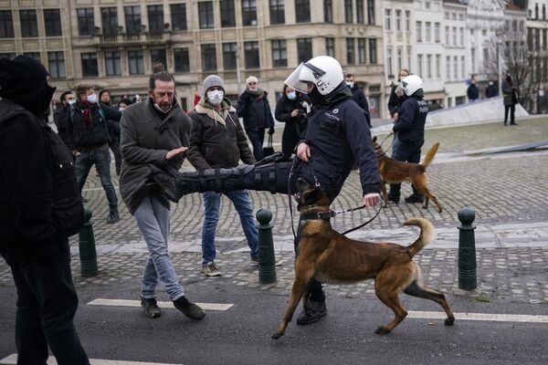 Policista kope demonstranta během nepovolené demonstrace proti omezujícím opatřením v souvislosti s covidem-19 v Bruselu. - Sputnik Česká republika