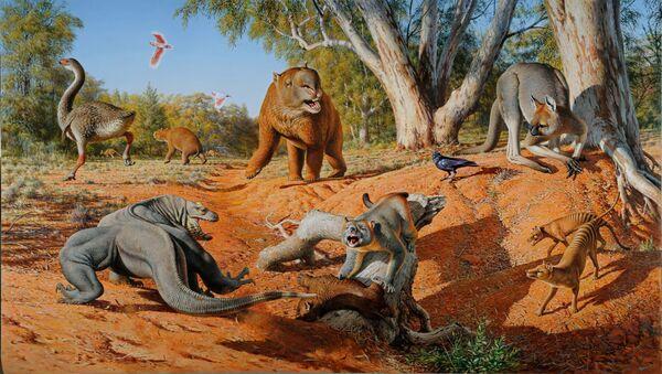 Megafauna Austrálie před 50 tisíci lety - Sputnik Česká republika