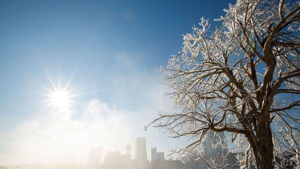 Покрытые льдом деревья в городе Ниагара-Фолс в штате Нью-Йорк  - Sputnik Česká republika