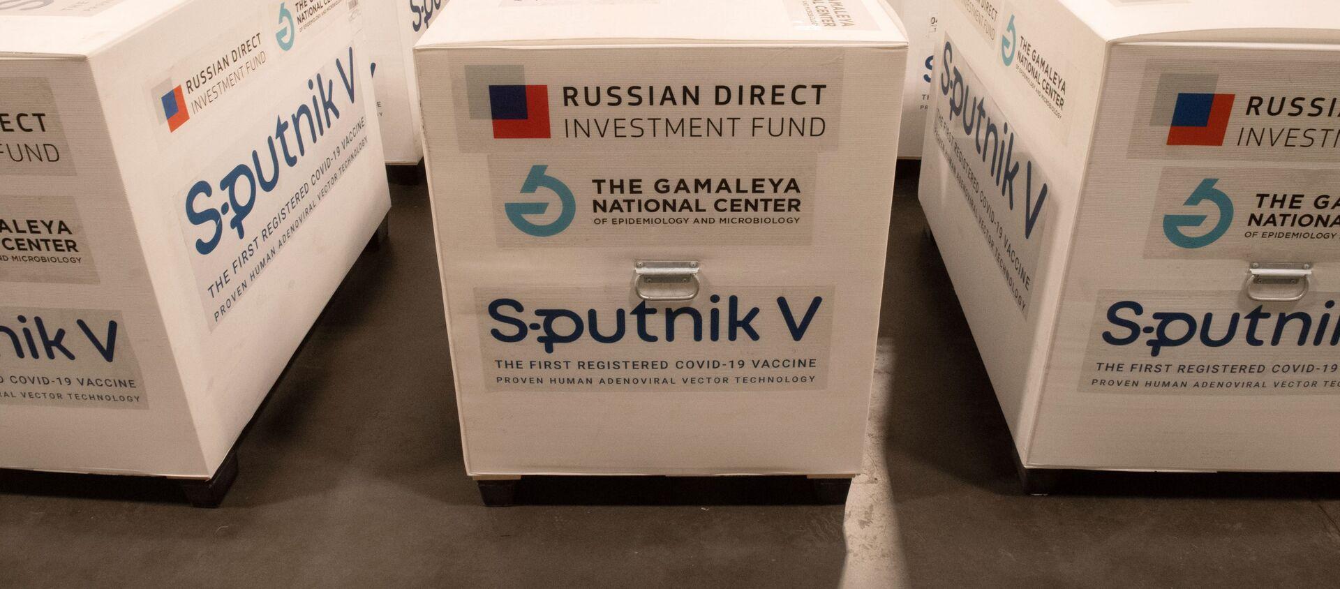 Zásilka s ruskou vakcínou Sputnik V proti koronavirové infekci covid-19 - Sputnik Česká republika, 1920, 26.02.2021
