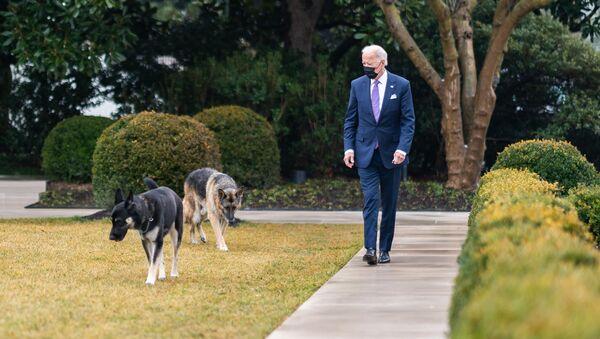 Americký prezident Joe Biden se svými psy Champem a Majorem - Sputnik Česká republika