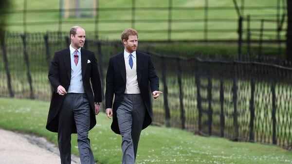 Prince William a princ Harry - Sputnik Česká republika