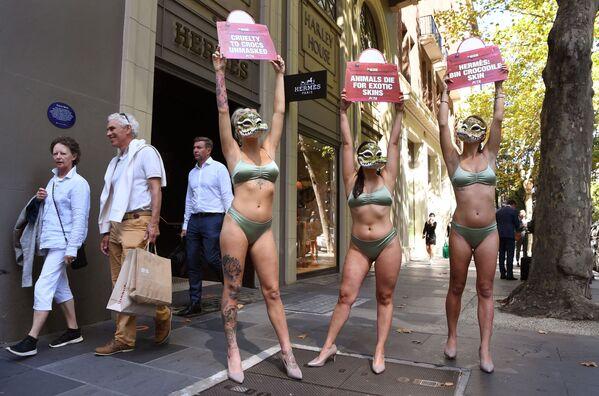 Aktivisté ze skupiny na ochranu práv zvířat PETA před obchodem francouzské módní značky Hermes v Melbourne. - Sputnik Česká republika