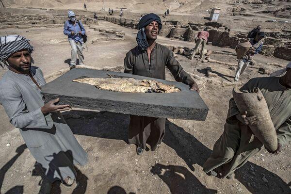 Na snímku je vidět, jak účastníci vykopávek nesou zkamenělou rybu, která byla nalezena ve zlatém městě.  - Sputnik Česká republika