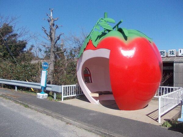 Autobusová zastávka ve tvaru jablka v bývalém městě Konagai, nyní část města Isahaya, Nagasaki, Japonsko. - Sputnik Česká republika