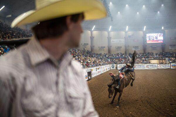 Show a rodeo v San Angelo, Texas - Sputnik Česká republika