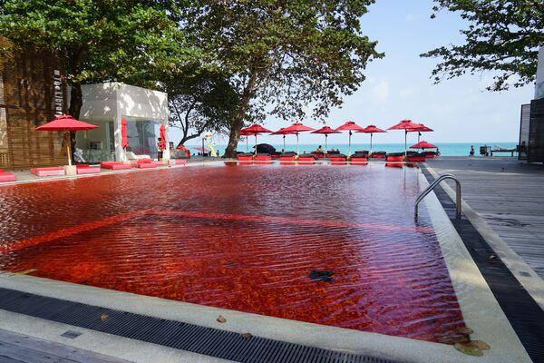 Nejčervenější bazén v The Library Resort, Thajsko - Sputnik Česká republika