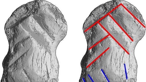 Гравированная кость гигантского оленя из Айнхорнхоле, Германия - Sputnik Česká republika