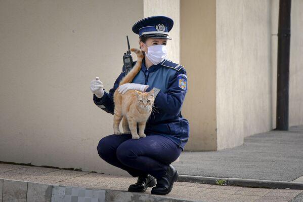 Policistka si hraje s kočkou před kostelem na Květnou neděli v rumunské Bukurešti - Sputnik Česká republika