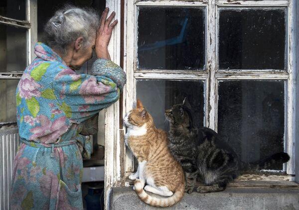 Пожилая женщина с кошками возле своего дома в городе Лачин (Бердзор) в Нагорном Карабахе - Sputnik Česká republika