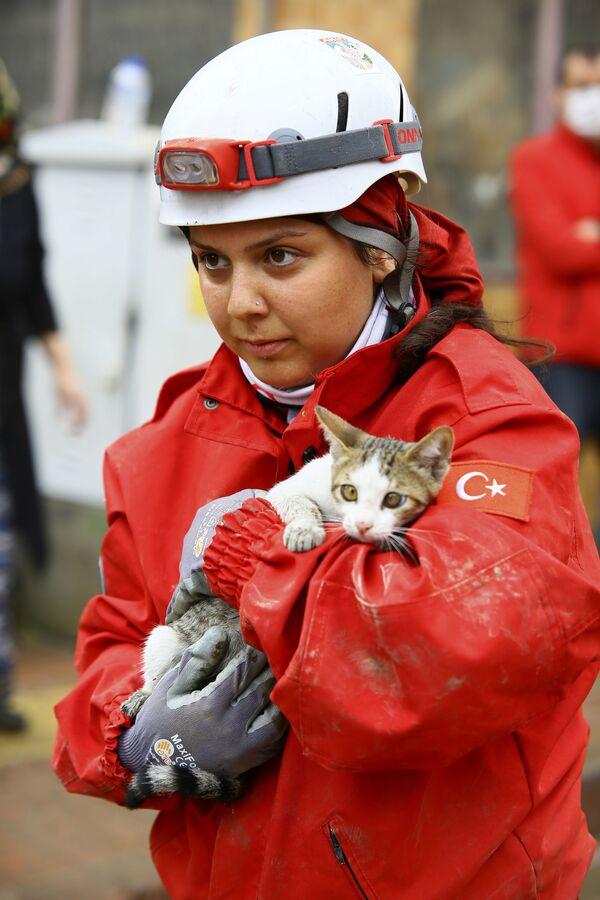 Členka záchranářského týmu drží v rukou kotě, které zachránila v jedné z budov ve městě Bozkurt. - Sputnik Česká republika