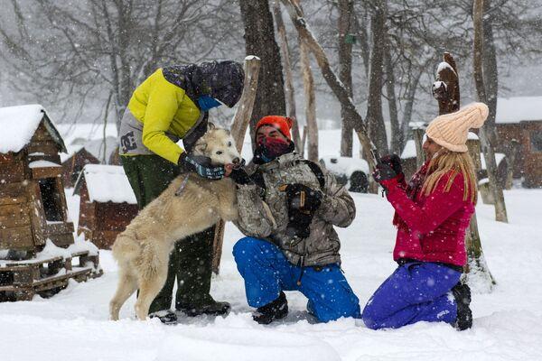 Turisté si hrají s mushingovými psy v komplexu Siberianos de Fuego v Argentině 7. srpna 2021. - Sputnik Česká republika