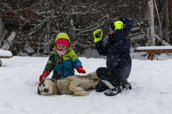 Turisté si hrají se psy v komplexu Siberianos de Fuego. - Sputnik Česká republika