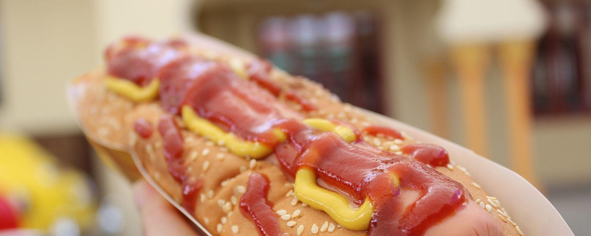 Hot dog  - Sputnik Česká republika, 1920, 24.08.2021