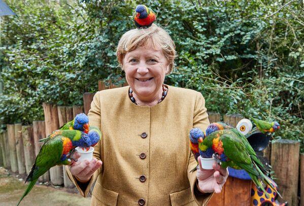 Německá kancléřka Angela Merkelová v ptačím parku Marlowe - Sputnik Česká republika