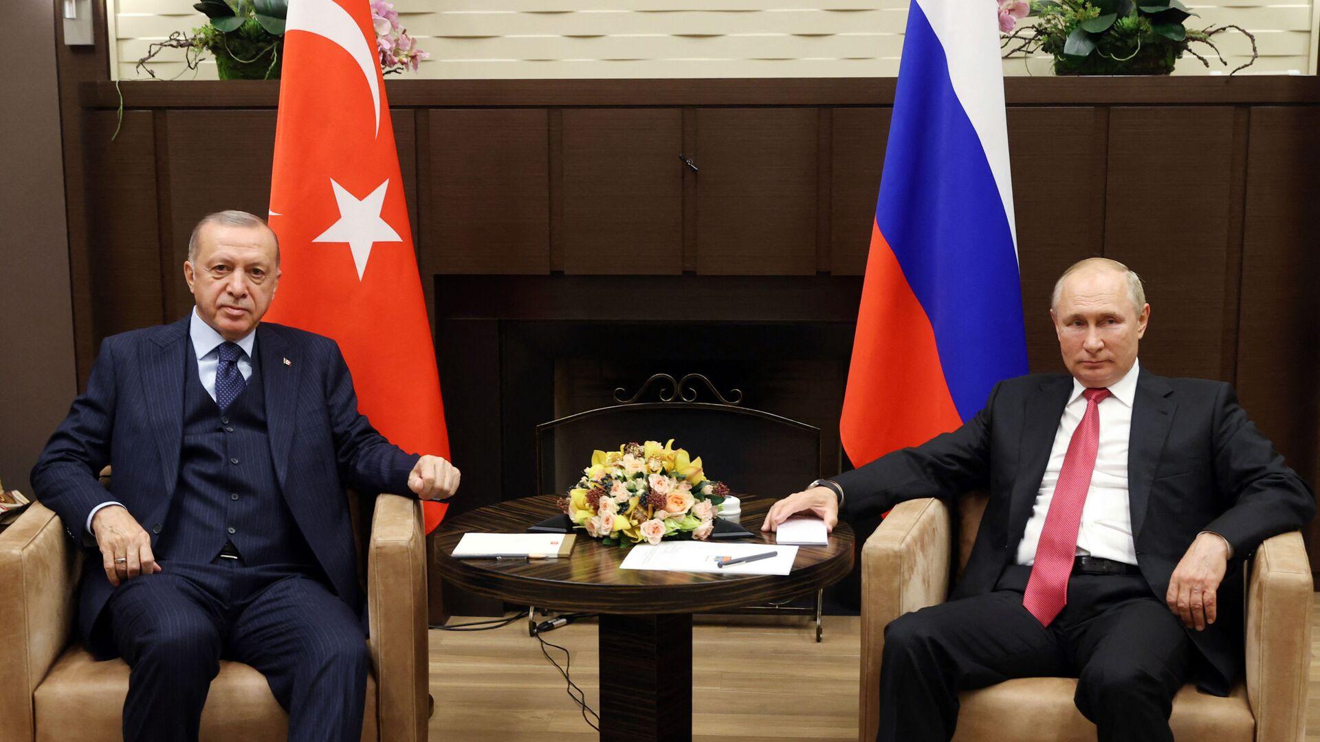 Президент России Владимир Путин и президент Турции Реджеп Тайип Эрдоган во время встречи в Сочи - Sputnik Česká republika, 1920, 29.09.2021