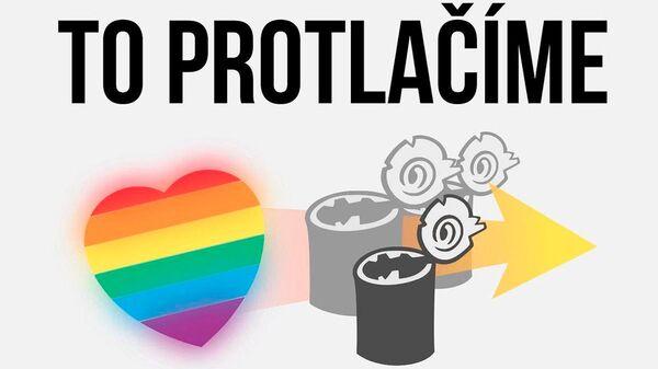 Иллюстрация в аккаунте Чешской пиратской партии в Instagram - Sputnik Česká republika