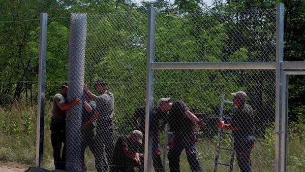 Plot na hranici Maďarska a Srbska - Sputnik Česká republika