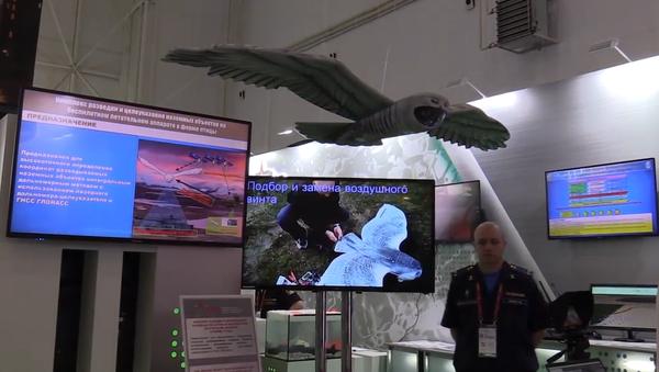 Inovační zbraň a vojenský dron zamaskovaný jako sova a další nejmodernější  exponáty na ruském fóru Army 2019 (VIDEO)  - Sputnik Česká republika
