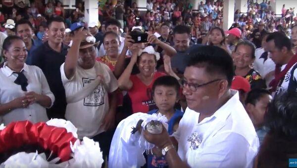 V Mexiku se starosta města oženil se samicí krokodýla - Sputnik Česká republika
