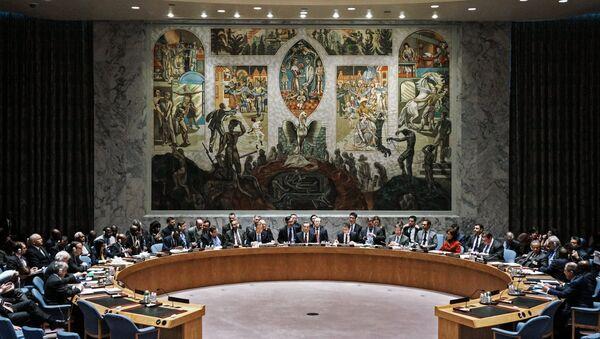 Rada bezpečnost OSN - Sputnik Česká republika
