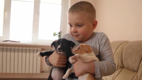 """""""Hlavně je nevyhazujte.""""  Malý chlapec zachránil přes sto zvířat - Sputnik Česká republika"""