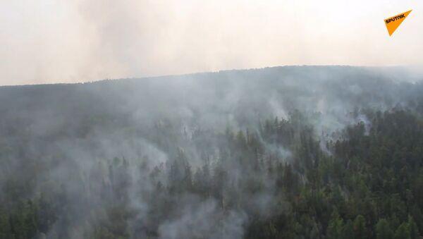 Obojživelná letadla hasí lesní požáry na Sibiři. Co nabídl Trump?   - Sputnik Česká republika
