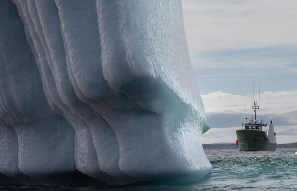 Loď poblíž ledovce v Bonavista Bay v Newfoundlandu v Kanadě - Sputnik Česká republika
