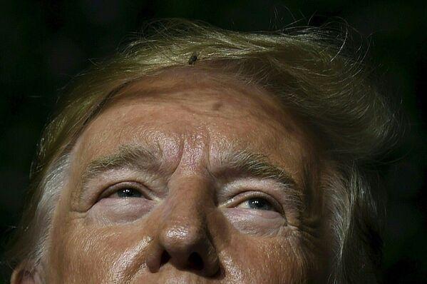 Moucha ve vlasech amerického prezidenta Donalda Trumpa během jeho vystoupení v Jamestownu ve Virginii. - Sputnik Česká republika