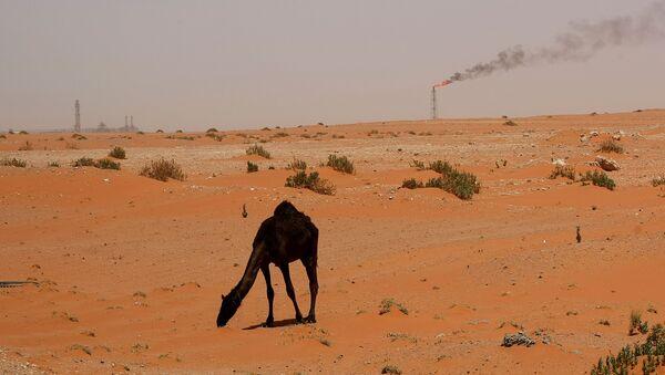 Poušť v Saúdské Arábii - Sputnik Česká republika
