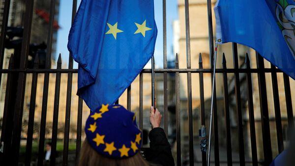 Protest proti brexitu před britským parlamentem v Londýně - Sputnik Česká republika