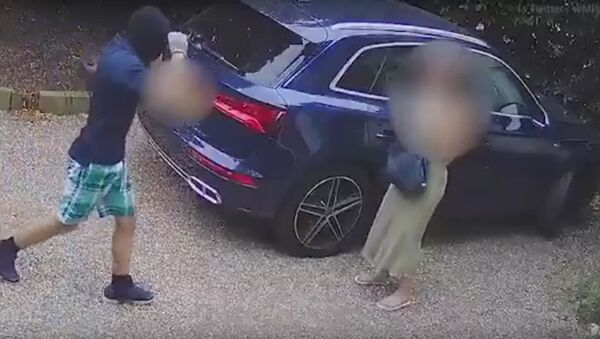 Děsivé video: Maminka tříletého dítěte bojovala se třemi zloději auta - Sputnik Česká republika