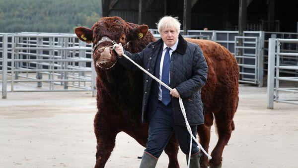 Boris Johnson - Sputnik Česká republika